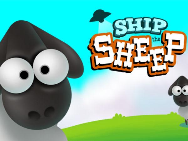 Bild zu Denken-Spiel Ship the Sheep