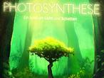 Vorschaubild zu Spiel Photosynthese