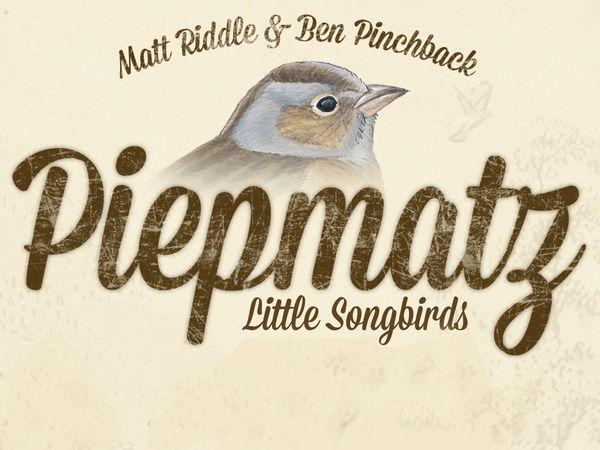 Bild zu Alle Brettspiele-Spiel Piepmatz: Little Songbirds