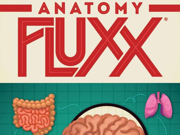 Bild zu Alle Brettspiele-Spiel Anatomy Fluxx
