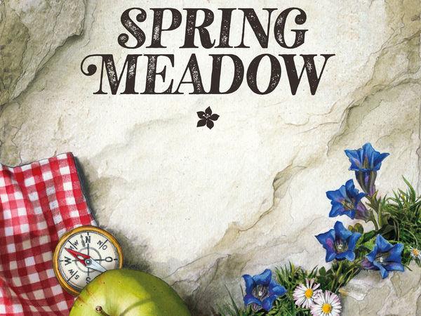 Bild zu Alle Brettspiele-Spiel Spring Meadow