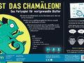Chamäleon Bild 2