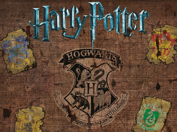 Bild zu Alle Brettspiele-Spiel Harry Potter: Kampf um Hogwarts