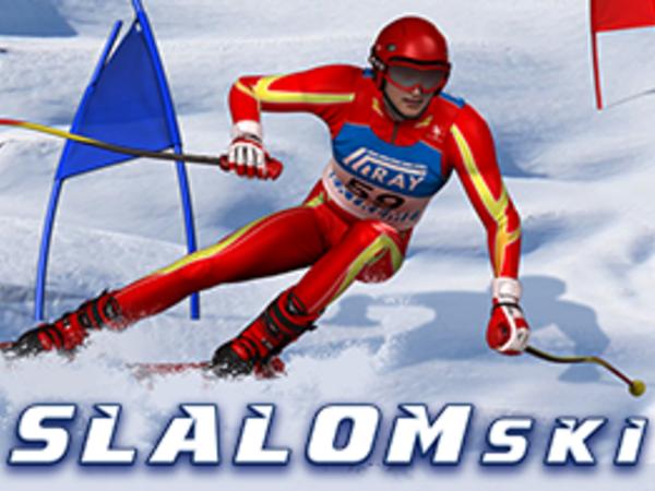 Bild zu HTML5-Spiel Slalom Ski Simulator
