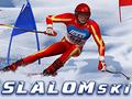 Neu-Spiel Slalom Ski Simulator spielen