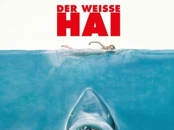 Bild zu Alle Brettspiele-Spiel Der weiße Hai