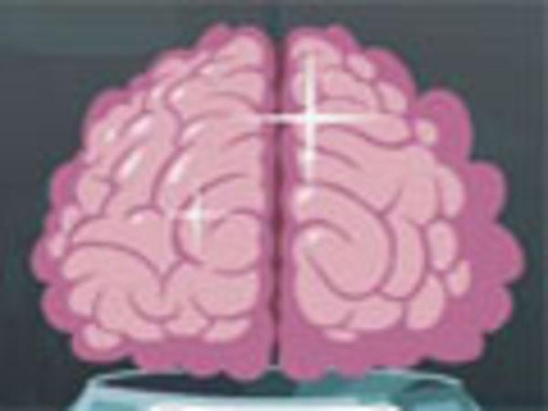 Bild zu Alle-Spiel Brain Buddies